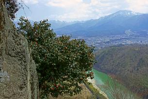 苗木城址に咲く藪椿と恵那山の写真素材 [FYI03989183]