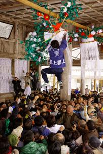 六日祭(花奪い祭り)  長滝白山神社の写真素材 [FYI03989187]