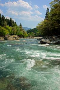 新緑と馬瀬川の写真素材 [FYI03989278]