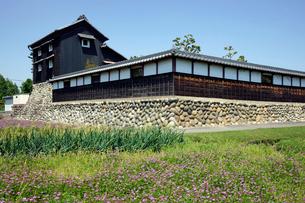 レンゲ畑と水屋の写真素材 [FYI03989297]