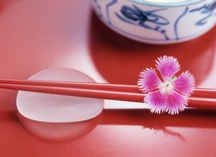 撫子と箸の写真素材 [FYI03989613]