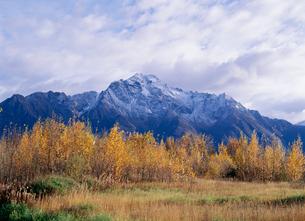 紅葉とパイオニア山の写真素材 [FYI03989937]