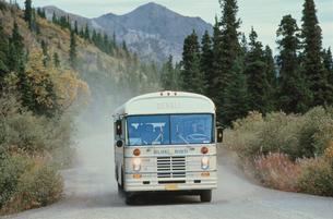 デナリ国立公園を行くツアーバスの写真素材 [FYI03990128]