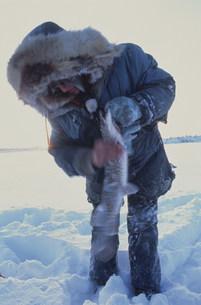 真冬の魚つりの写真素材 [FYI03990174]
