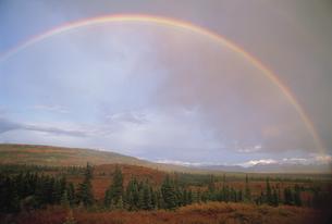 虹 デナリ国立公園 アラスカ州 アメリカの写真素材 [FYI03990286]