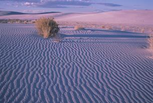 ホワイトサンズ国立公園の写真素材 [FYI03990321]