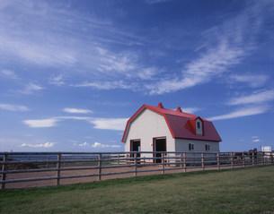 赤い屋根の牧舎の写真素材 [FYI03990608]
