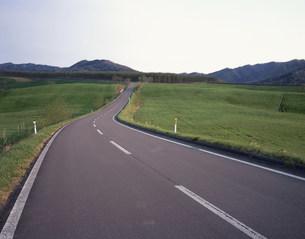 道と牧草の写真素材 [FYI03990725]