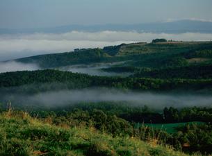 滝川丸加高原展望台より見おろす朝霧の写真素材 [FYI03990785]