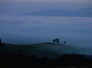 滝川丸加高原展望台より見おろす牧場と朝霧の写真素材 [FYI03990786]
