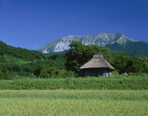 大山とかやぶきの小屋の写真素材 [FYI03991371]