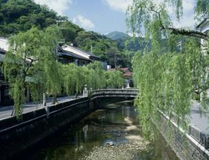 城崎温泉の写真素材 [FYI03991596]