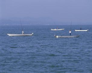 宍道湖しじみ漁の写真素材 [FYI03991702]