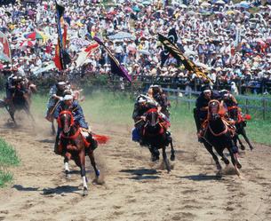 相馬野馬追甲冑競馬の写真素材 [FYI03991821]