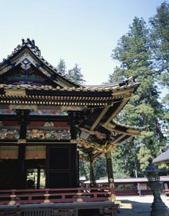 妙義神社本殿の写真素材 [FYI03991987]