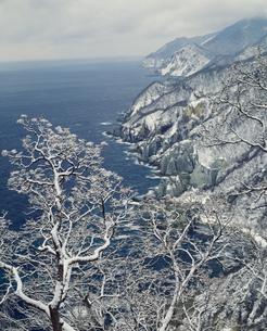 下北半島国定公園 冬の仏ヶ浦の写真素材 [FYI03992000]