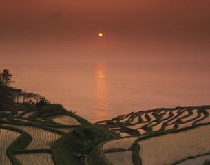 白米の千枚田の夕景の写真素材 [FYI03992002]