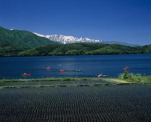 青木湖カヌーと北アルプスの写真素材 [FYI03992075]