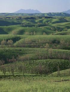 阿蘇の草原と阿蘇山の写真素材 [FYI03992103]