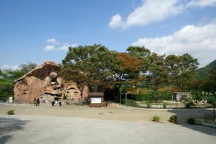 広島市安佐動物公園の写真素材 [FYI03992903]