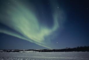 雪原とオーロラの写真素材 [FYI03993015]