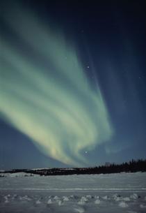 雪原とオーロラの写真素材 [FYI03993016]