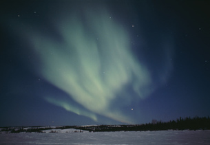 雪原とオーロラの写真素材 [FYI03993020]