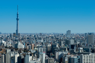 東京展望の写真素材 [FYI03993078]