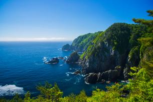 アンモ浦展望台から三陸海岸線の写真素材 [FYI03993670]