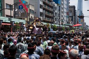 三社祭,浅草雷門通りの神輿の写真素材 [FYI03993782]