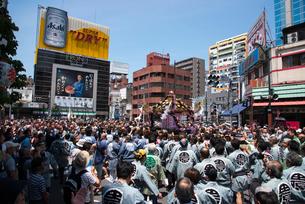 三社祭,浅草雷門通りの本社神輿の写真素材 [FYI03993783]