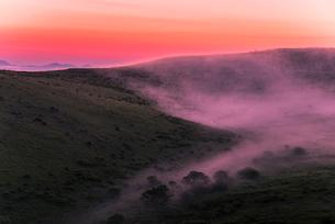 車山肩より夜明けの霧ヶ峰高原車山湿原朝焼けの空と朝霧の写真素材 [FYI03993836]