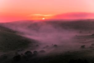 車山肩より朝焼けに染まる朝霧ご来光と霧ヶ峰高原車山湿原の写真素材 [FYI03993839]