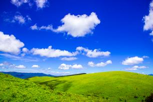 霧ヶ峰高原夏の浮雲の写真素材 [FYI03993901]