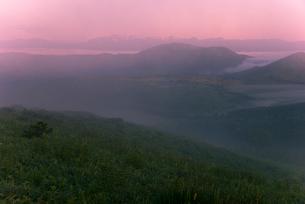 車山肩より霧の霧ヶ峰高原朝焼けに染まる朝霧の写真素材 [FYI03993916]
