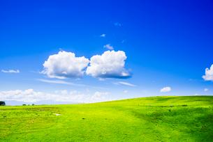 霧ヶ峰高原夏の浮雲の写真素材 [FYI03993967]