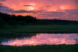 霧ヶ峰高原八島ヶ原湿原稲妻に光る積乱雲の写真素材 [FYI03993980]