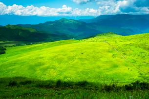 車山山頂より望む霧ヶ峰高原の草原の写真素材 [FYI03994108]
