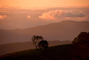 入笠高原より望む乗鞍岳穂高連峰方向夕焼けと雲海の写真素材 [FYI03994467]