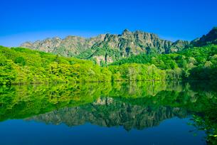 新緑の戸隠高原戸隠連峰映す鏡池の写真素材 [FYI03994514]