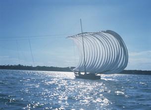 霞ケ浦の帆引船の写真素材 [FYI03994744]