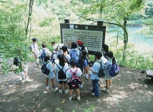 裏磐梯にて自然観察をする子供達の写真素材 [FYI03994748]