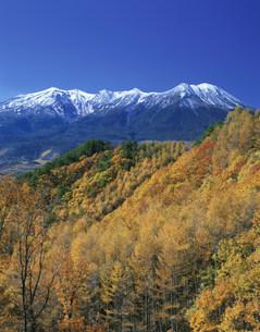 紅葉と木曽御岳山の写真素材 [FYI03994755]