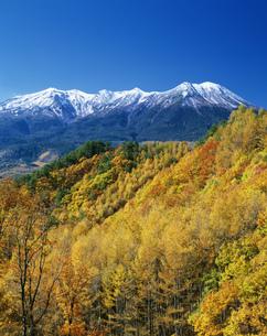 紅葉と木曽御岳山の写真素材 [FYI03994757]