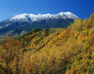 紅葉と木曽御岳山の写真素材 [FYI03994761]