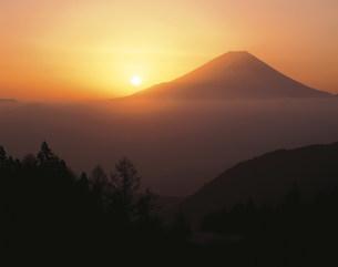 丸山林道より望む富士山と日の出の写真素材 [FYI03994854]