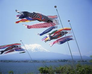 鯉のぼりと富士山と河口湖の写真素材 [FYI03994865]