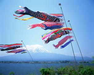 鯉のぼりと富士山と河口湖の写真素材 [FYI03994871]