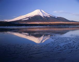 冬の山中湖と逆さ富士1月   山梨県の写真素材 [FYI03994887]