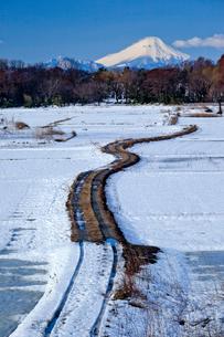 雪化粧の田園の農道と富士山の写真素材 [FYI03994933]